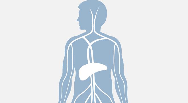 Krankheitsbilder nach Symptomen